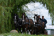 © Licensed to London News Pictures. 11/05/2012. Windsor, UK Horses are exercised at The Royal Windsor Horse Show in Windsor, England on May 11 2012. Photo credit : Stephen Simpson/LNP