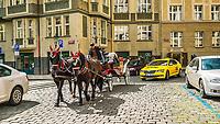 Prague, la ville aux mille tours et mille clochers, n'a pas seulement inspire Andre Breton et les surrealistes. Chaque annee, la belle Tcheque seduit des millions d'admirateurs du monde entier. Monuments, façades et statues racontent une histoire mouvementee ou planent les ombres du Golem, de Mucha ou de Kafka.<br /> Depuis 1992, le centre ville historique est inscrit sur la liste du patrimoine mondial par l'UNESCO<br /> Josefov