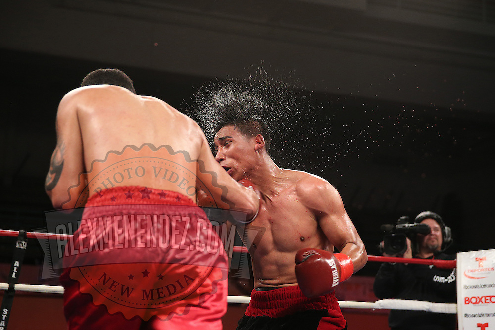 """Emanuel DeJesus fights against Luis Torres (red stripe) during the """"Boxeo Telemundo"""" boxing match at the Kissimmee Civic Center on Friday, March 14, 2014 in Kissimmme, Florida. (Photo/Alex Menendez)"""
