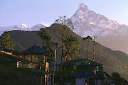 Machupuchare behind tea house