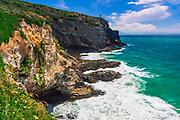 Harrington Point on the Otago Peninsula,  Otago, South Island, New Zealand