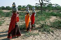Inde, Rajasthan, region de Jaisalmer, Femmes à la corvé d'eau au puit du village // India, Rajasthan, Jaisalmer area, water time for women