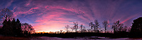 Dawn Morning Clouds. Winter Backyard Nature in New Jersey. Composite of 12 images taken with a Fuji X-T1 camera and 16 mm f/1.4 lens (ISO 200, 16 mm, f/2.8, 1/60 sec). Raw images processed with Capture One Pro and the composite generated with AutoPano Giga Pro.