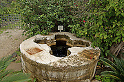 Israel, Sea of Galilee, Tabgha, Church of the Multiplication of Loaves and Fishes Baptismal font