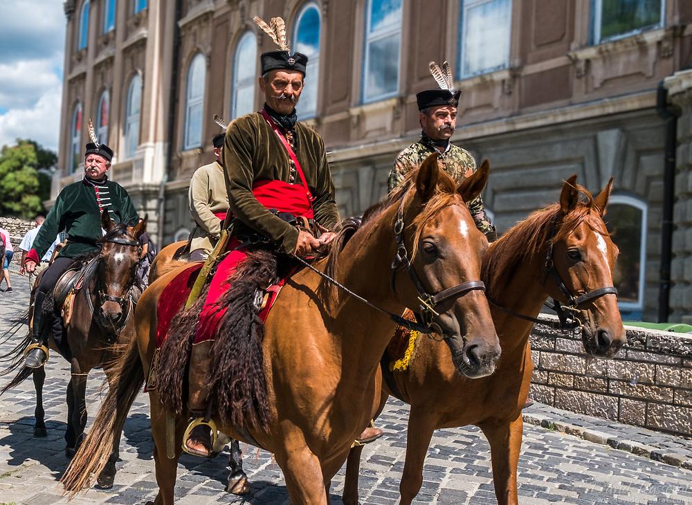 Hungarian hussars