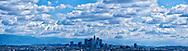 Dave McFaddin. Los Angeles skyline.