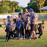 {DeSoto Bulldogs Baseball ~ 7-9}