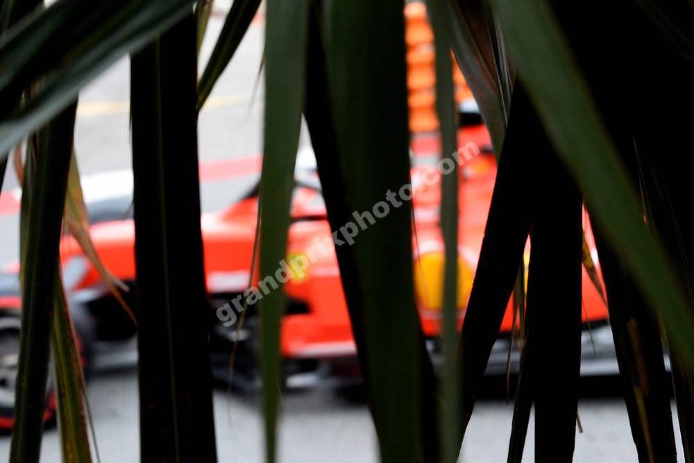 Sebastian Vettel (Ferrari) behind palms during practice before the 2019 Monaco Grand Prix. Photo: Grand Prix Photo