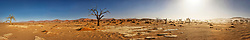 Panoramic view of sand dunes and bare tree at Sossusvlei, Namibia, Africa