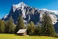 Alpine Pastures with Traditional houses-- Swiss Alps, Grindelwald, Switzerland .<br /> <br /> Visit our SWITZERLAND  & ALPS PHOTO COLLECTIONS for more  photos  to browse of  download or buy as prints https://funkystock.photoshelter.com/gallery-collection/Pictures-Images-of-Switzerland-Photos-of-Swiss-Alps-Landmark-Sites/C0000DPgRJMSrQ3U