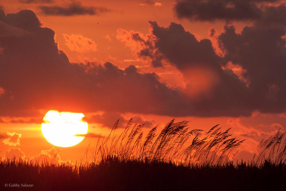 Sunset, Tiger Tail Beach, Naples, Florida.