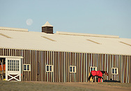 Town of Wallkill - A harness racing horse and trainer walk past a barn at the Mark Ford Training Center as the moon sets in the background on Dec. 12, 2011.