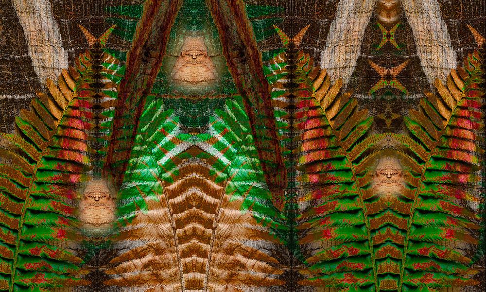 """Lysichiton Americanus Elders"", derivative image created from a photo of a sword fern (Lysichiton americanus) and sawn western red cedar (Thuja plicata) log, overcast light, August, Olympic Peninsula, WA, USA"