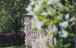 THEMENBILD - auf gestappeltes Brennholz umgeben von Bäumen, aufgenommen am 08. Mai 2020, Bramberg, Österreich // on stacked firewood surrounded by trees on 2020/05/08, Bramberg, Austria. EXPA Pictures © 2020, PhotoCredit: EXPA/ Stefanie Oberhauser