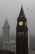The clock tower at the King Street Station stands in front of a fog obscured Seattle skyline in the early morning.<br />