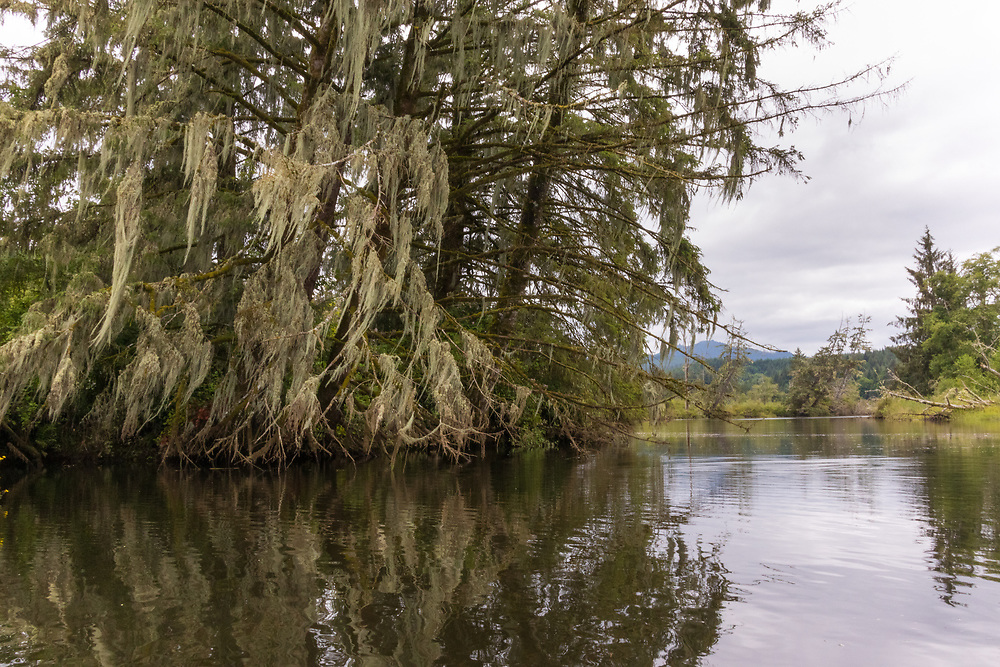 Kayaking on the Lewis and Clark National Wildlife Refuge, Columbia River, Oregon, Oregon Coast