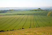 View to Woodborough Hill, Vale of Pewsey, near Alton Barnes, Wiltshire, England, UK