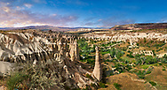 """Pictures & images of the fairy chimney rock formations and rock pillars of """"love Valley"""" near Goreme, Cappadocia, Nevsehir, Turkey .<br /> <br /> If you prefer to buy from our ALAMY PHOTO LIBRARY  Collection visit : https://www.alamy.com/portfolio/paul-williams-funkystock/cappadociaturkey.html (TIP refine search - type which part of Cappadocia into the LOWER search box)<br /> <br /> Visit our TURKEY PHOTO COLLECTIONS for more photos to download or buy as wall art prints https://funkystock.photoshelter.com/gallery-collection/3f-Pictures-of-Turkey-Turkey-Photos-Images-Fotos/C0000U.hJWkZxAbg"""