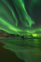 Northern Lights - Aurora Borealis fill sky over Unstad beach, Vestvågøy, Lofoten Islands, Norway
