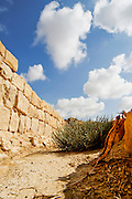 Israel, Negev, Nitzna, Nabataeans ruins