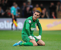 AFC Wimbledon's James Shea looks dejected after conceding his sides third goal<br /> <br /> Photographer Kevin Barnes/CameraSport<br /> <br /> Football - The Football League Sky Bet League Two - Newport County AFC v AFC Wimbledon - Saturday 27th September 2014 - Rodney Parade - Newport<br /> <br /> © CameraSport - 43 Linden Ave. Countesthorpe. Leicester. England. LE8 5PG - Tel: +44 (0) 116 277 4147 - admin@camerasport.com - www.camerasport.com