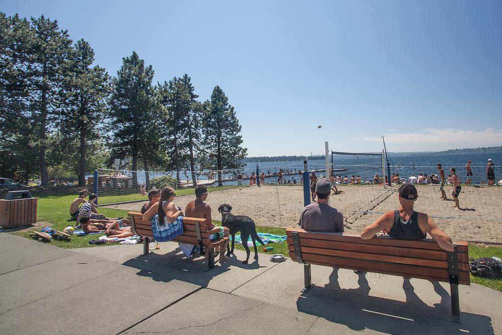 North America, United States, Washington, Kirkland, volleyball game at Marsh Park on Lake Washington