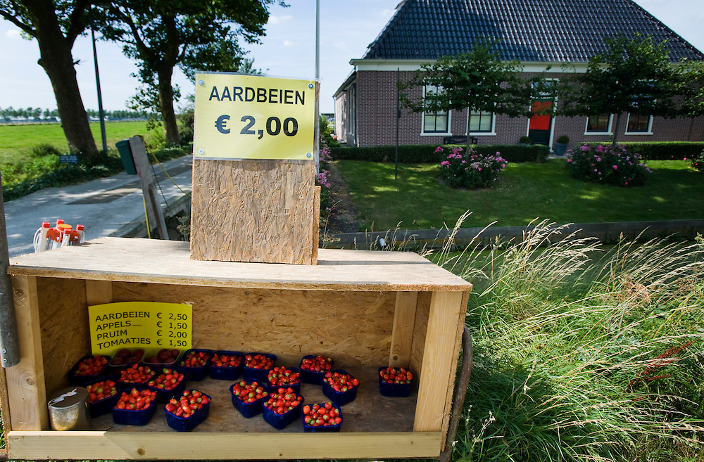 Nederland, Avenhorn, 18 aug 2009.Aardbeienverkoop langs de kant van de weg tussen Avenhorn en Alkmaar, Middenweg nr 10. .Goedkoop bakje aardbeien.Foto (c) Michiel Wijnbergh