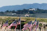 May 2-4, 2014: Laguna Seca Raceway. Amrican flags at Laguna Seca