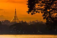 Shwedagon Pagoda at twilight, Yangon, Myanmar (Burma)