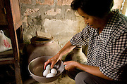 Lan Guihua, a widowed farmer, oversees the cooking of lunch for guests and neighbors at her home in Ganjiagou Village, Sichuan Province, China. (She is featured in the book What I Eat: Around the World in 80 Diets). The caloric value of her day's worth of food on a typical day in June was 1900 kcals. She is 68 years of age; 5 feet, 3 inches tall; and 121 pounds. Her farmhouse is tucked into a bamboo-forested hillside beneath her husband's grave, and the courtyard opens onto a view of citrus groves and vegetable fields. Chickens and dogs roam freely in the packed-earth courtyard, and firewood and brush for her kitchen wok are stacked under the eaves. Although homegrown vegetables and rice are her staples, chicken feathers and a bowl that held scalding water for easier feather plucking are clues to the meat course of a special meal for visitors. In this region, each rural family is its own little food factory and benefits from thousands of years of agricultural knowledge passed down from generation to generation.  She lives in the area of Production Team 7 of Ganjiagou Village, 1.5 hours south of the provincial capital of Sichuan Province?Chengdu.