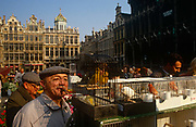 A bird fancier admires caged tropical birds in the Grand Place (Grote Markt, in Flemish) bird market, Brussels, Belgium. The archetypal Belgian gentleman wears a flat cap and smokes a short, fat cigar as the shadows of the birdcages come across his round face. In the cages are small birds from tropical countries, on sale every Sunday for those wanting avian company in their homes. The Brussels Grand Place hosts a bird market and the selection and prices are generally better than can be found in pet shops though the origins of these creatures are questionable. The Grand Place is Brussels' main city square, the focal point for colourful events throughout the year. Its Dutch-styled gabled guildhalls date from the 13th century and is now a UNESCO World Heritage Site.