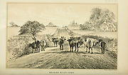 Belgium Milk Cows from Cattle and dairy farming. Published 1887 by Govt. Print. Off. in Washington. United States. Bureau of Foreign Commerce (1854-1903)