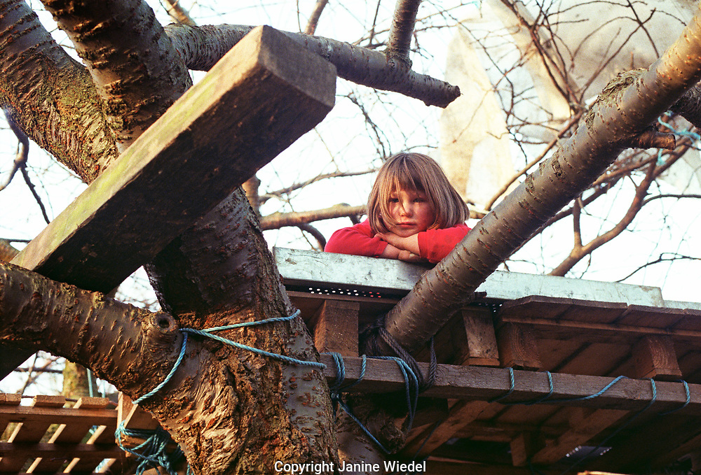 Eco-Warriors fighting against a corporate takeover of parkland took to the trees at Big Willow eco camp in Crystal Palace. They squatted the land for nearly a year (1998-1999) living in tree houses and dug out tunnels. Bromley Council had plans to build a vast leisure complex which would destroy much of the parkland.
