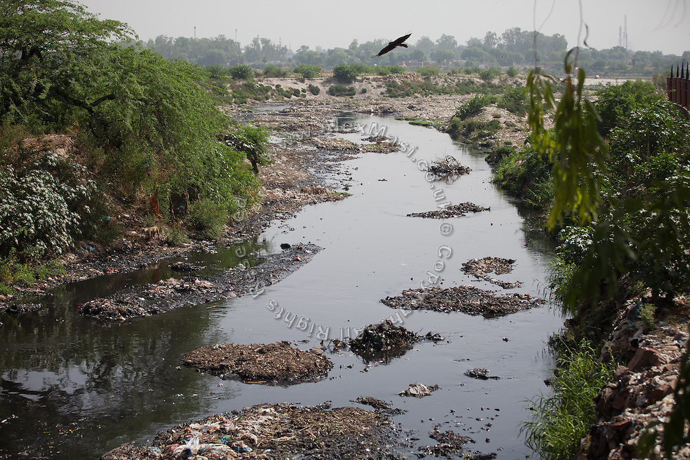 Untreated water from a municipal drain is entering the heavily polluted and semi-dry Yamuna River next to the Taj Mahal, in Agra.