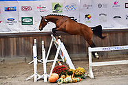 2019-11-national-freejump-contest-ternat