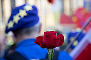 Anti Brexit pro Europe demonstrator with a red rose to show love at the protest in Westminster opposite Parliament as MPs debate and vote on amendments to the withdrawal agreement plans on 14th February 2019 in London, England, United Kingdom.