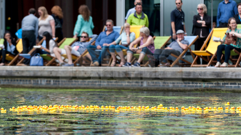 © Licensed to London News Pictures. 14/07/2016. London, UK. A rubber duck takes place in the canal at Merchant Square, Paddington.  Participants donated money to sponsor a duck to raise funds for COSMIC's More Smiles Appeal for the redevelopment of the children's intensive care unit at nearby St Mary's Hospital, Paddington. Photo credit : Stephen Chung/LNP