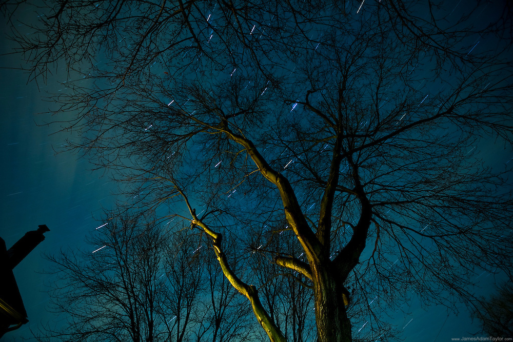 Late November: As the stars swirl overhead, this home's lighting illuminates a tree, and adds to light pollution amid the suburban sprawl of once rural southern new jersey