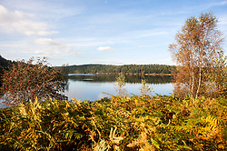 Langsett Reservoir on the Edge of the Peak District Shot from the south East side of the dam looking East toward Midhope Cliff Lane and the dam wall<br /> 07 October 2012.<br /> Image © Paul David Drabblebble