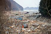 TOHOKU DISASTER