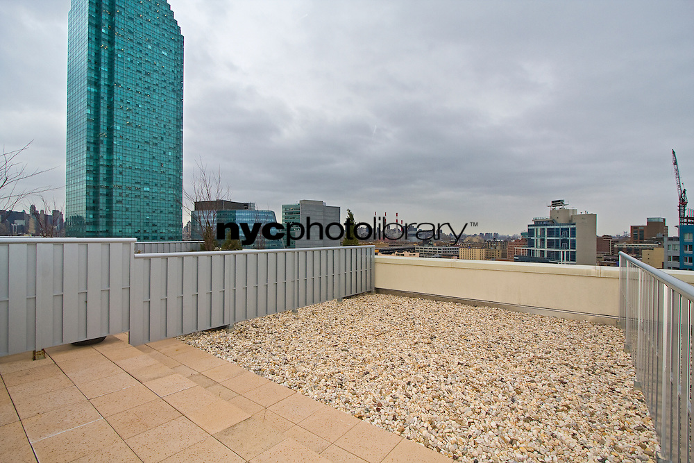 Roof Deck at 28 Thomson Avenue