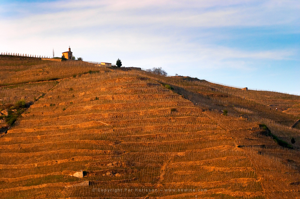 View across the river Rhone to Tain. The chapel on top of the hill. The Hermitage vineyards on the hill behind the city Tain-l'Hermitage, on the steep sloping hill, stone terraced. Sometimes spelled Ermitage. Tain l'Hermitage, Drome, Drôme, France, Europe