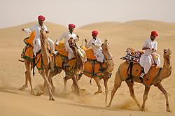 Camel riders pose the SAM dunes near Jaisalmer in India's Rajasthan Thar desert. (Photo by Ami Vitale).Riders:.Chotu Ram, Gopu Ram, Ashok Ram, Achaka Ram, Gorkha Ram, Hotu Ram, Uga Ram, Kutala Ram..40 Sagtaram Parihar, VPO SAM .Jaisalmer, Rajasthan 345001.IndiaCamel riders pose the SAM dunes near Jaisalmer in India's Rajasthan Thar desert. (Photo by Ami Vitale).Riders:.Chotu Ram, Gopu Ram, Ashok Ram, Achaka Ram, Gorkha Ram, Hotu Ram, Uga Ram, Kutala Ram..40 Sagtaram Parihar, VPO SAM .Jaisalmer, Rajasthan 345001.India