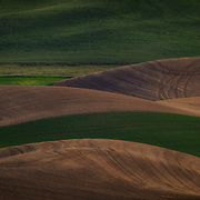 The Palouse is an area in south eastern Washington and southern Idaho. It is characterized by gentle rolling hills covered with fields of wheat and legumes. The hills look like sand dunes because they were formed in much the same way - that is from loess, or wind-blown silt from the arid regions to the west and south of the area. In the spring they are lush shades of green when the wheat and barley are young, and in the summer they are dry shades of brown when the crops are ready for harvest.