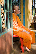 16 MARCH 2006 - KAMPONG CHAM, KAMPONG CHAM, CAMBODIA: A Buddhist monk at Wat Hanchey, a pre Angkorian temple complex above the Mekong River near the city of Kampong Cham in central Cambodia.  PHOTO BY JACK KURTZ