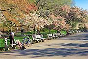 New York City: Spring Riverside Drive Park