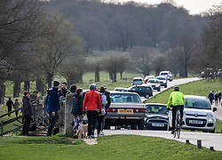 © Licensed to London News Pictures. 21/03/2020. London, UK. Walkers out in Richmond Park today as traffic jams build up. As the City centre empties, traffic jams build up in South West London, as walkers, runners and families descend on Richmond Park to exercise during the coronavirus crisis. Photo credit: Alex Lentati/LNP