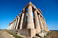 Greek Dorik columns at the  ruins of Temple F at Selinunte, Sicily .<br /> <br /> If you prefer to buy from our ALAMY PHOTO LIBRARY  Collection visit : https://www.alamy.com/portfolio/paul-williams-funkystock/selinuntetemple.html<br /> Visit our CLASSICAL WORLD HISTORIC SITES PHOTO COLLECTIONS for more photos to buy as buy as wall art prints https://funkystock.photoshelter.com/gallery-collection/Classical-Era-Historic-Sites-Archaeological-Sites-Pictures-Images/C0000g4bSGiDL9rw