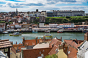 Whitby at the mouth of the Esk River, seen from Dracula's Church Steps, in England, United Kingdom, Europe. In Bram Stoker's famous 1897 novel, Dracula came ashore as a creature resembling a large dog who climbed the dramatic 199 Church Steps to the graveyard of Church of Saint Mary, adjacent to Whitby Abbey ruins atop East Cliff, above the Esk River. The Church of Saint Mary the Virgin is an Anglican parish church serving the towns of Whitby and Ruswarp in North Yorkshire county. This was at the end of our England Coast to Coast hike, on day 13 of 14. The next day, our 14th, ended being dropped off in York. [This image, commissioned by Wilderness Travel, is not available to any other agency providing group travel in the UK, but may otherwise be licensable from Tom Dempsey – please inquire at PhotoSeek.com.]