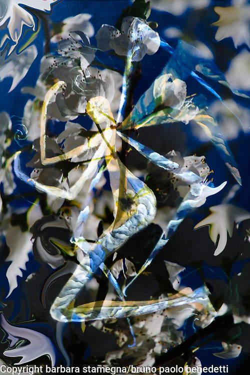 central winged angel like abstract image with mottled blue yellow white pattern